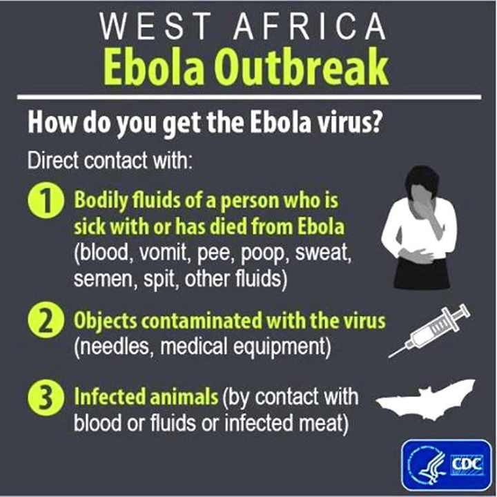 How do you get the ebola Virus